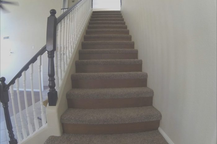 11 Peaceful Carpeted Stairs Wooden Floor Photos