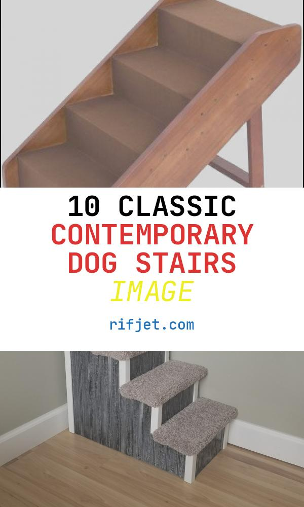 10 Classic Contemporary Dog Stairs Image
