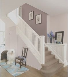 Modern Colours for Hall Stairs and Landing Beautiful Colour Schemes for Hall Stairs and Landing Google Search