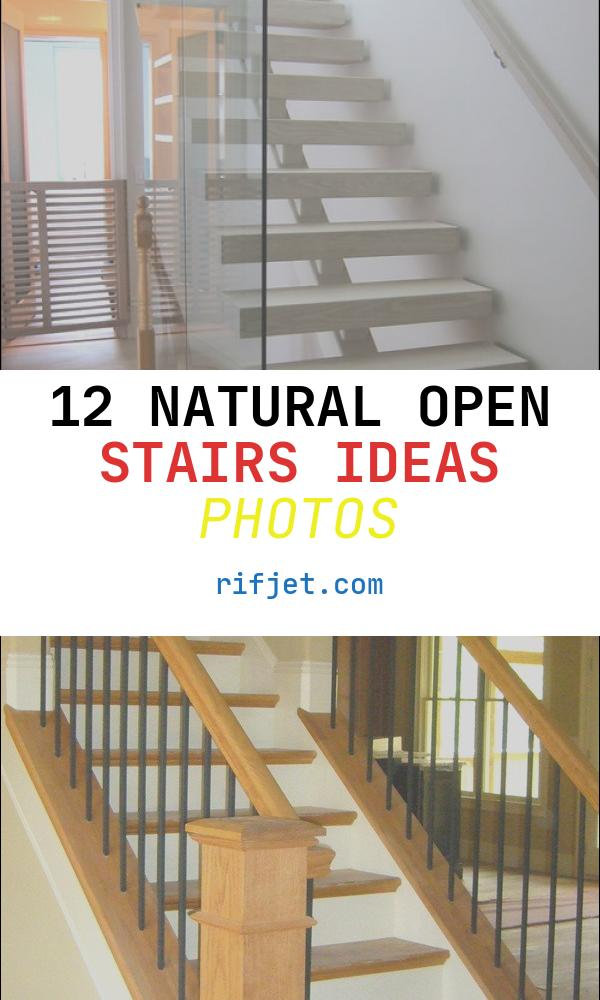 Open Stairs Ideas Unique Open Riser Stair Home Design Ideas Remodel and