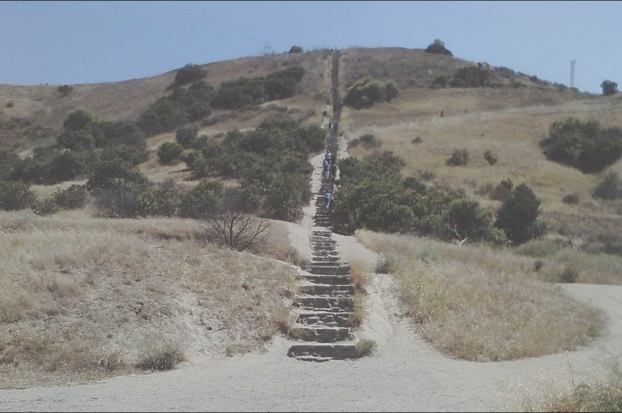 10 Exclusive Parking for Culver City Stairs Stock