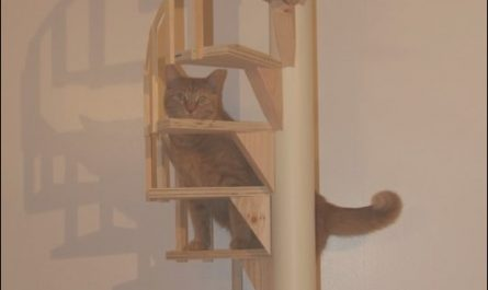 Cat Furniture Stairs Luxury Details About Spiral Cat Trees Stairs Real Cabinet Grade