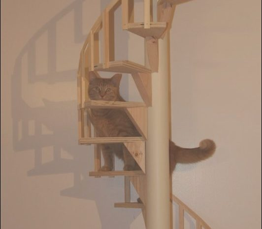 15 Entertaining Cat Furniture Stairs Photos