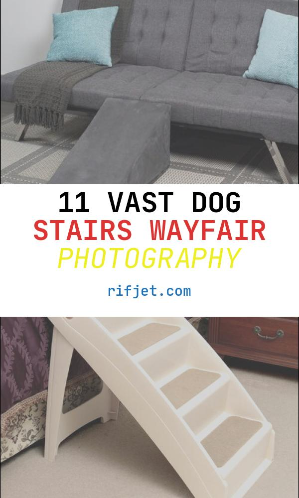 11 Vast Dog Stairs Wayfair Photography