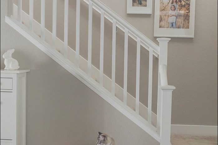 15 original Ideas for Wall Decor Going Up Stairs Photos
