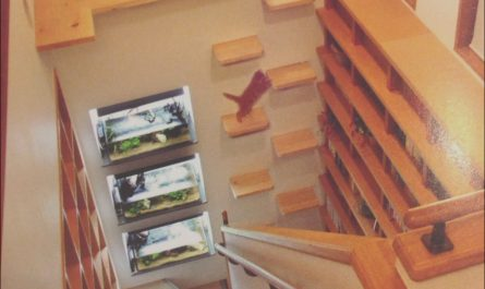 Kitty Stairs Ideas Lovely Pin by Jeri Safari On My Furry Babies