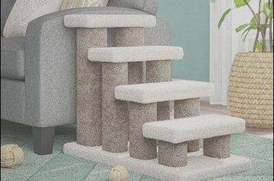 Wayfair Dog Stairs Best Of Dog Ramps & Stairs You Ll Love In 2019