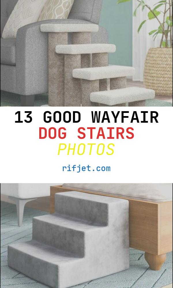 13 Good Wayfair Dog Stairs Photos