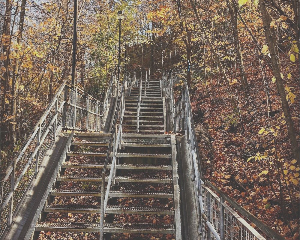 Chedoke Stairs Parking Elegant 5 Spectacular Fall Hikes In Hamilton tourism Hamilton