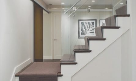 Decorating Basement Stairs Lovely Stair Steps Ideas Basement Masters