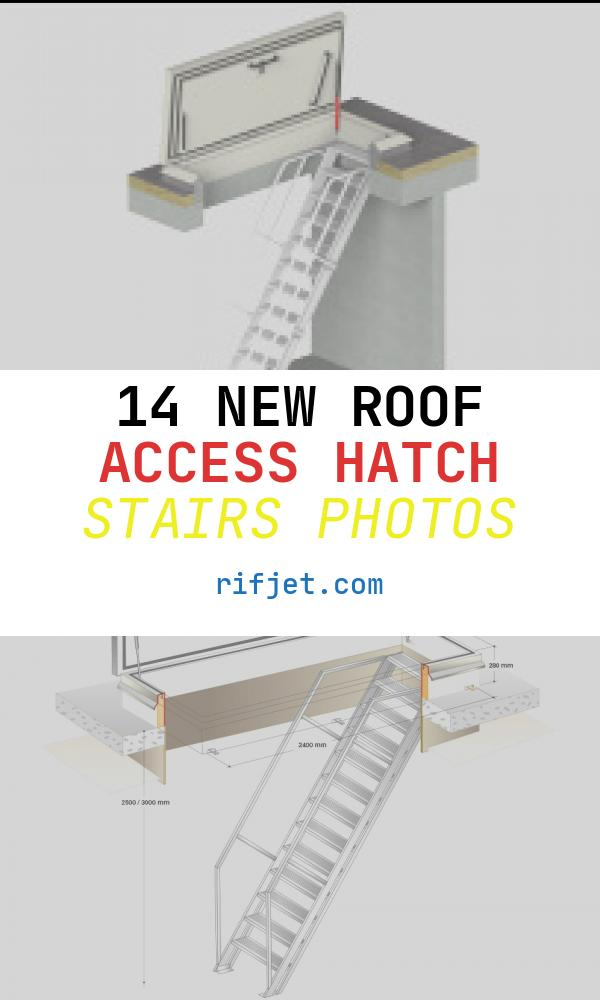 14 New Roof Access Hatch Stairs Photos