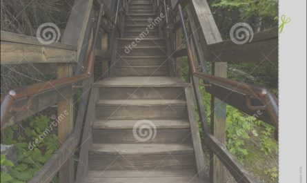Sets Of Stairs In the Woods New Staircase In Woods Royalty Free Stock Image