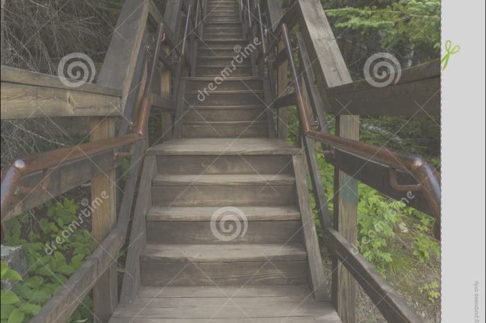 9 Present Sets Of Stairs In the Woods Photos