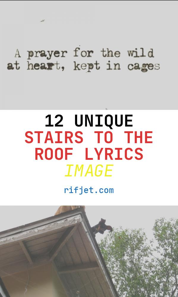 12 Unique Stairs to the Roof Lyrics Image