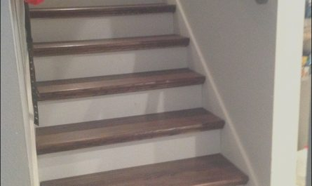 Stairs Wooden Steps Best Of Quick and Easy From Carpet Stairs to Wood Diy Hack