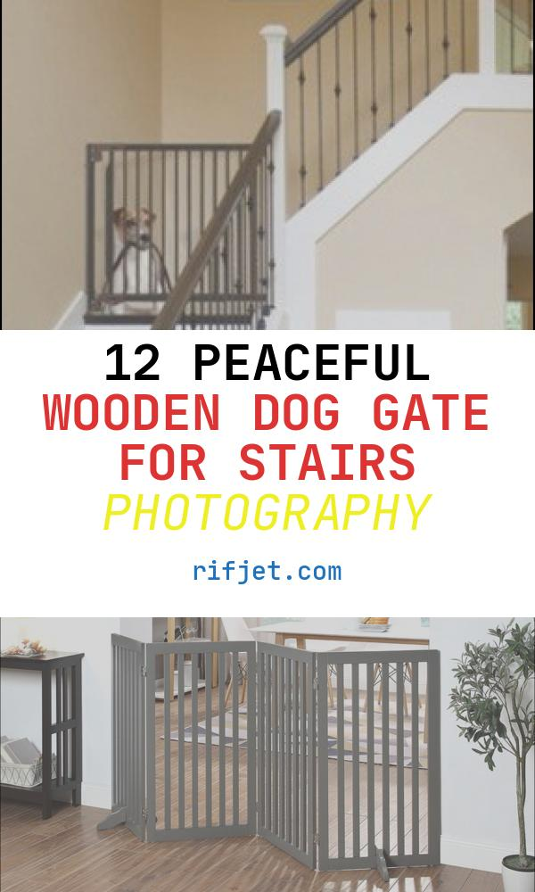 Wooden Dog Gate for Stairs Beautiful Wooden Indoor Dog Gates Foter
