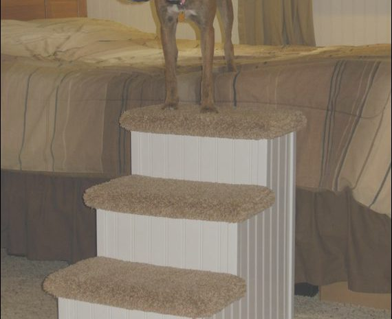 11 Authentic Wooden Pet Stairs for Large Dogs Photos