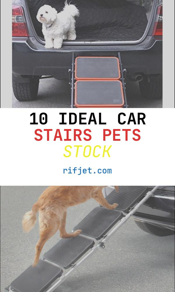 10 Ideal Car Stairs Pets Stock