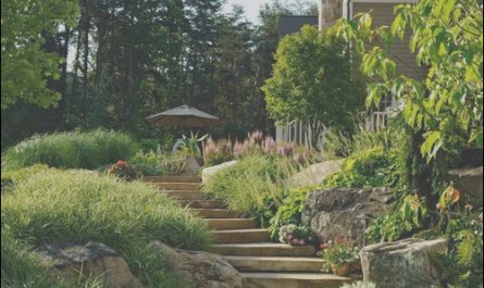 Hillside Stairs Design New Hillside Stairs Home Design Ideas Remodel and Decor