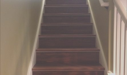 Ideas for Your Stairs Inspirational 6 Ideas for Finishing Your Basement Stairs September 2019