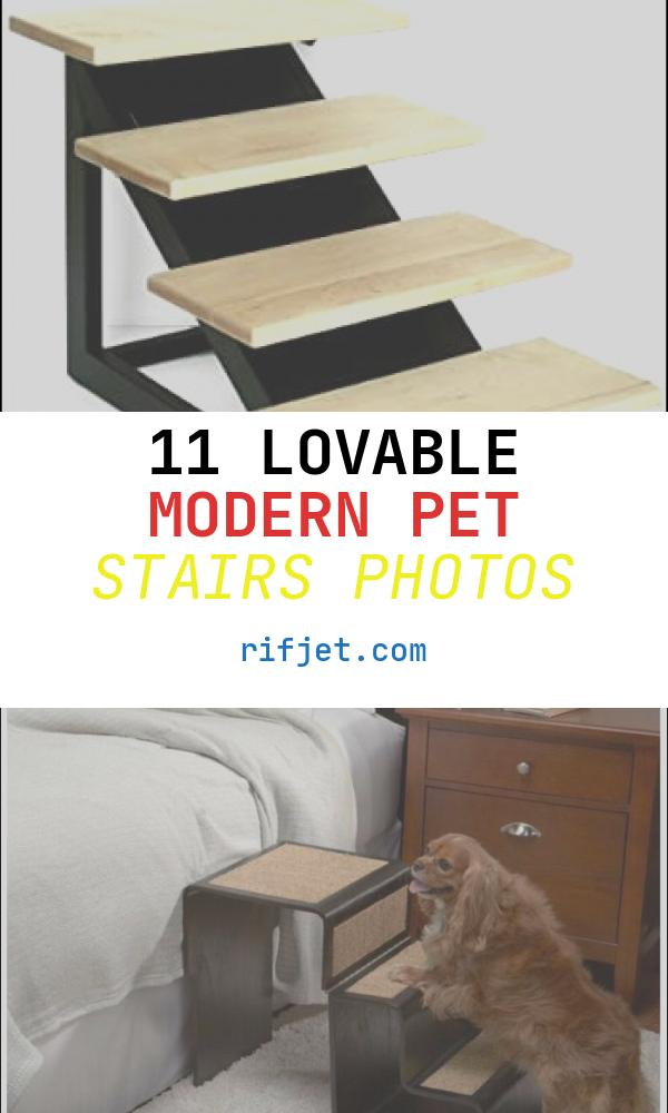 11 Lovable Modern Pet Stairs Photos