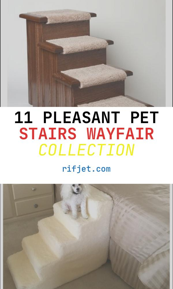 11 Pleasant Pet Stairs Wayfair Collection