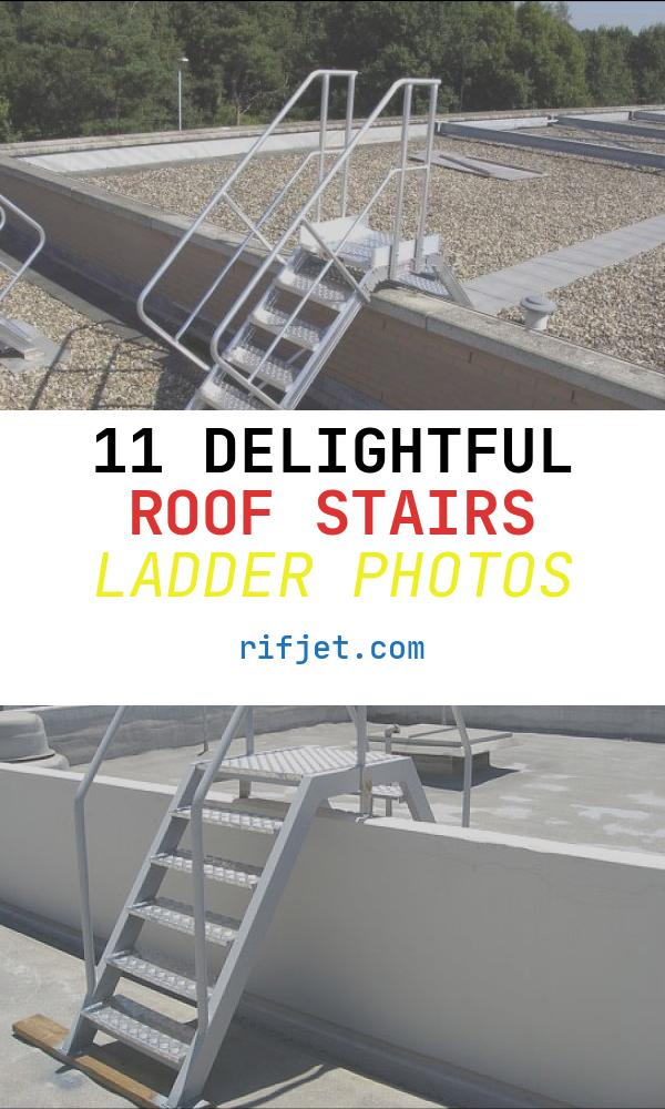 11 Delightful Roof Stairs Ladder Photos