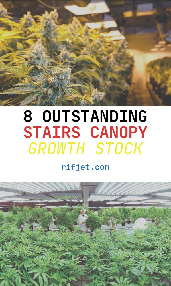 8 Outstanding Stairs Canopy Growth Stock