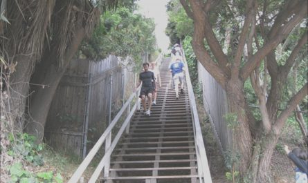 Stairs Hike Los Angeles Elegant 101 Things to Do In Los Angeles by area