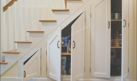 Stairs Storage Ideas Cabinet Elegant Appealing Decoration Under Stairs Storage Ideas with