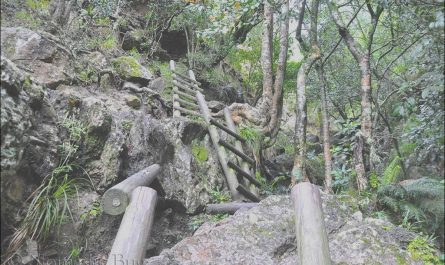 Table Mountain Stairs Inspirational Snakes and Ladders Table Mountain Cape town south