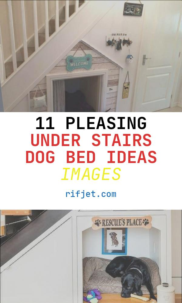 Under Stairs Dog Bed Ideas New Under Stair Dog Bed In 2019