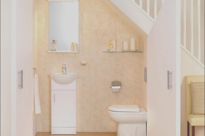 10 Petite Under Stairs Ideas Bathroom Photos