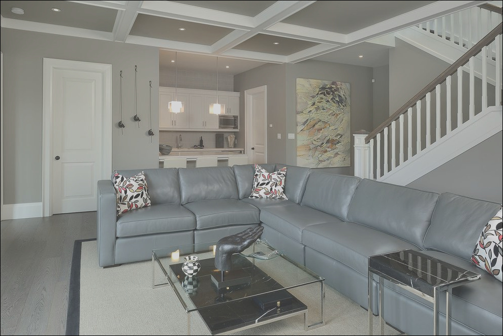grey sofas basement traditional with interior designers and decorators black leather sofa ideas