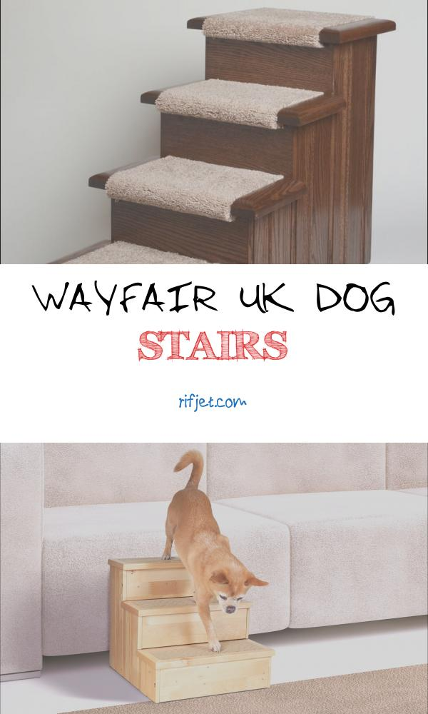 Wayfair Uk Dog Stairs New Premier Pet Steps Raised Panel 4 Step Pet Stair & Reviews