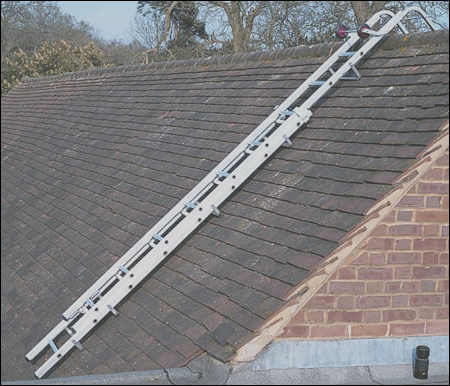 ladder extending roof