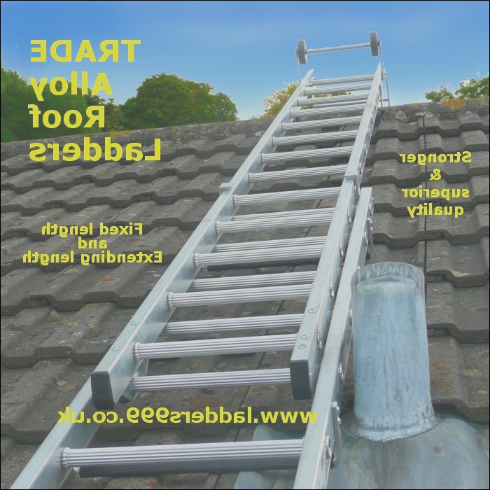 trade roof ladders