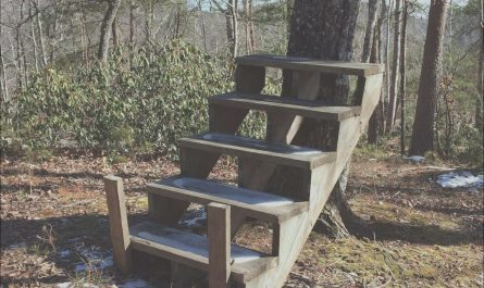 Random Sets Of Stairs In the Woods Best Of 10 Random Stairs In the Woods Taken From Reddit the