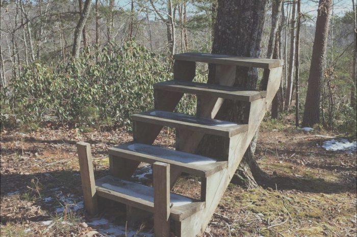 14 Practical Random Sets Of Stairs In the Woods Photography