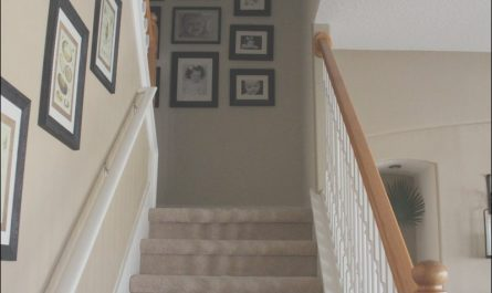 Stairs and Hallway Paint Ideas Awesome Interior Graceful Decorating Ideas for Hallway Interior