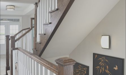 Stairs Model Interior Luxury Pin by Jo Ann Capelaci On Highlands Millbrook Model