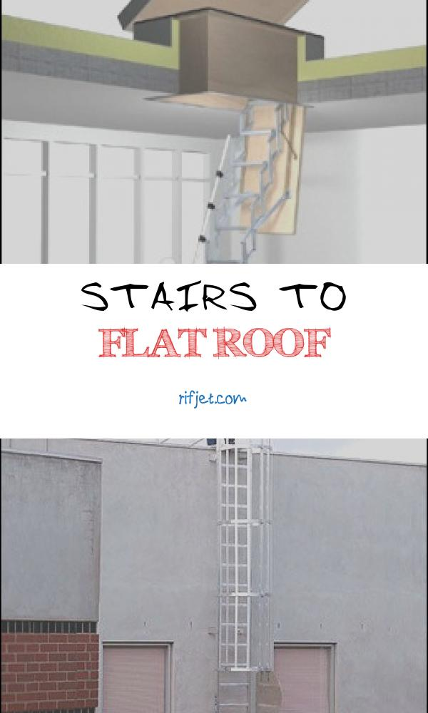 10 Special Stairs to Flat Roof Photography