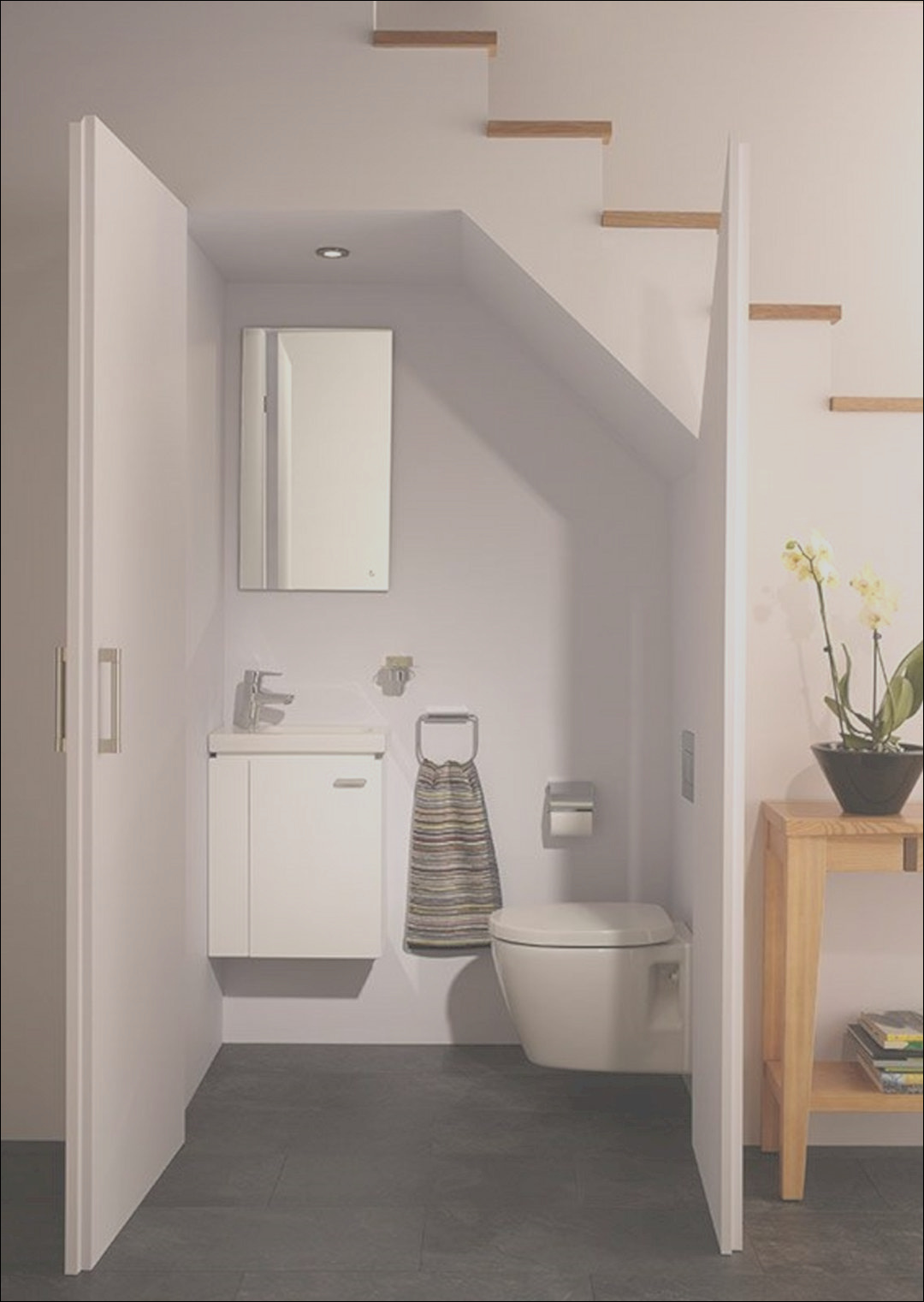 cloakroom to toilet conversion