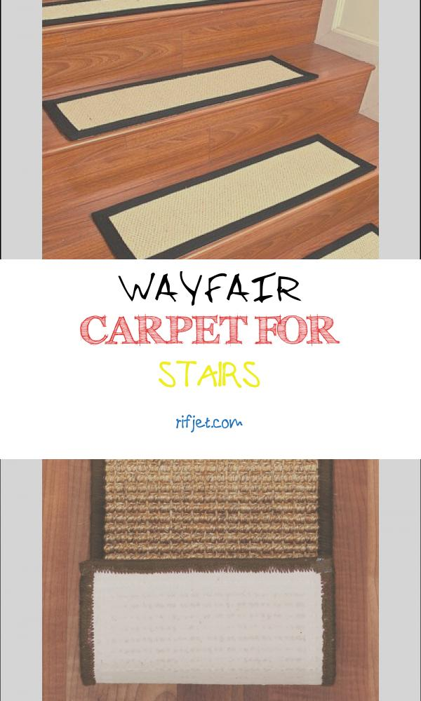 8 Authentic Wayfair Carpet for Stairs Photography