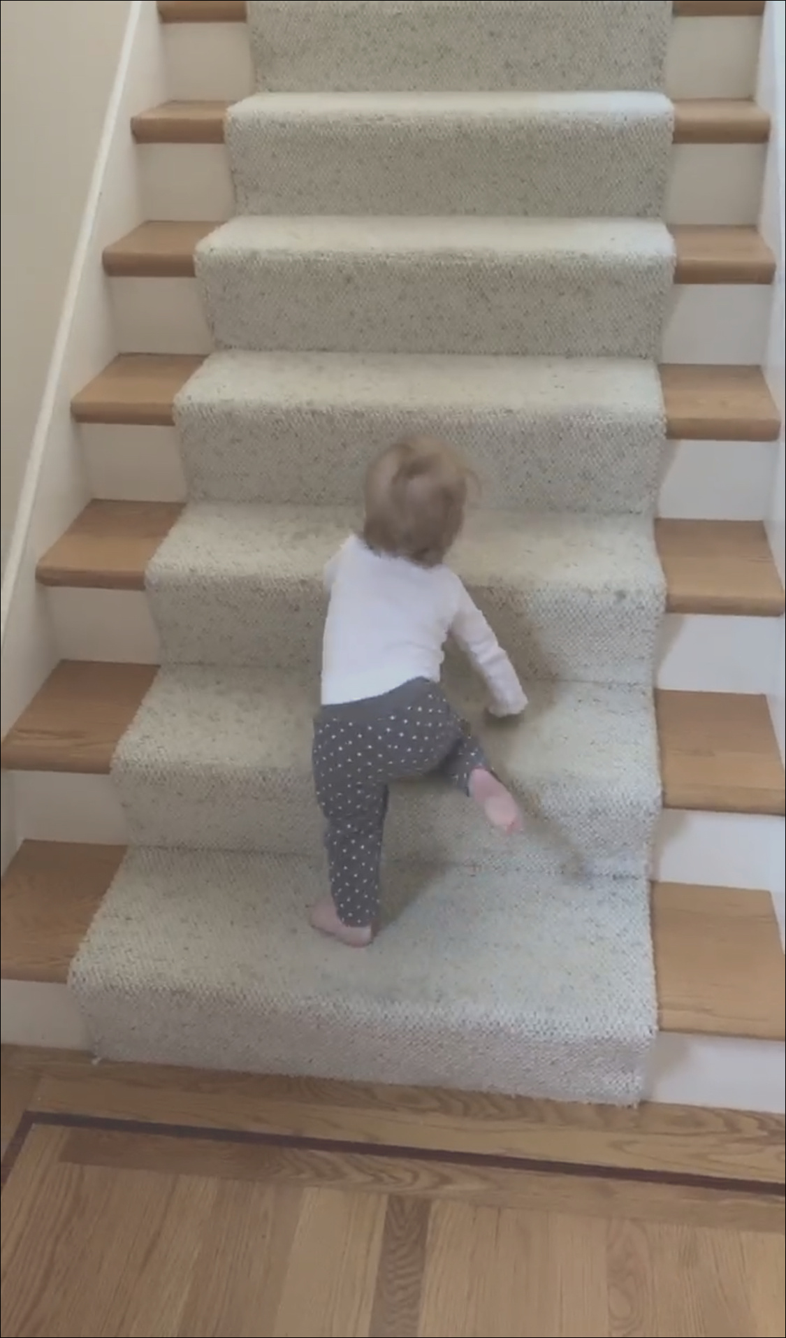 crawling up stairs