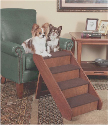 dog stairs for bed large