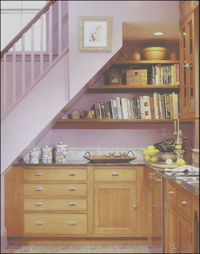 ideas for use space under stairs with storage