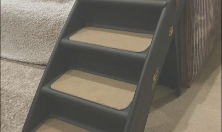 Sofa Stairs for Dogs Luxury Easipet Steps Stairs sofa Dog Puppy Pet